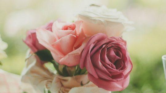 عيد الحب: قيم الحب التي تسكننا و نعيش بها